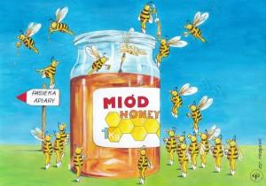 Sprytne pszczółki